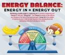 School Lunch Wellness Poster/Info-Graphic, CLIENT: Aramark, Inc.