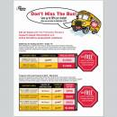 Promotional Flyer, Client: The Princeton Review